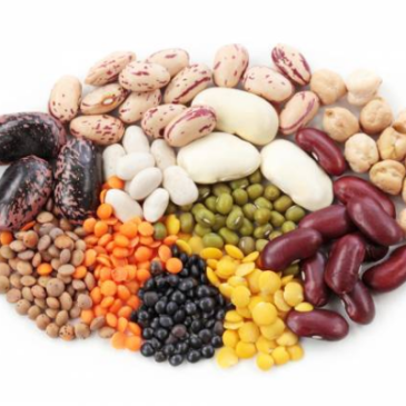 assorted raw and cooked colorful beans
